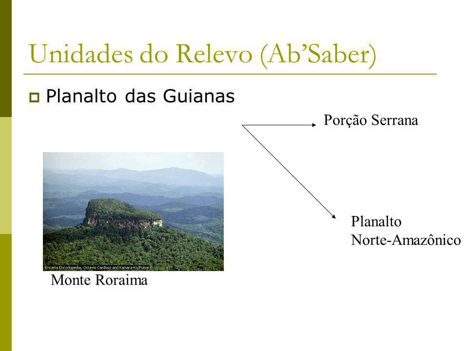 Unidades do Relevo (AbSaber) Planalto das Guianas Porção Serrana Planalto Norte-Amazônico Monte Roraima