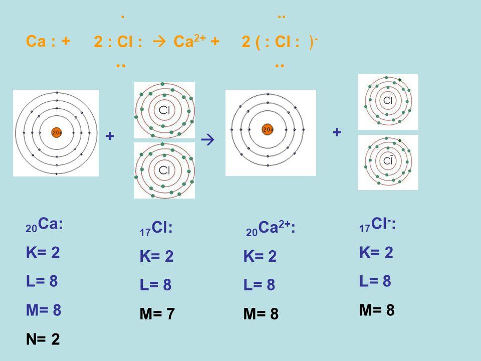 Ca : + 20 Ca: K= 2 L= 8 M= 8 N= 2 + +. 2 : Cl :.. Ca 2+ +.. 2 ( : Cl : -.. 20 Ca 2+ : K= 2 L= 8 M= 8 17 Cl: K= 2 L= 8 M= 7 17 Cl - : K= 2 L= 8 M= 8