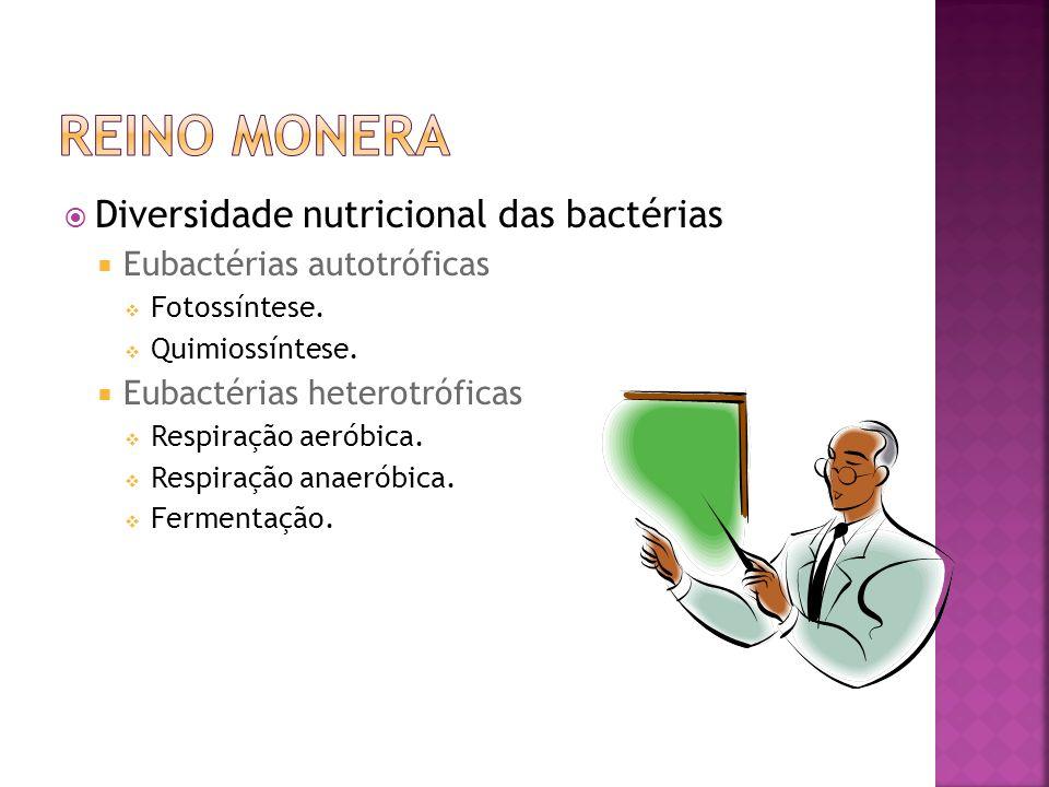 Reprodução das bactérias Assexuada Divisão binária.