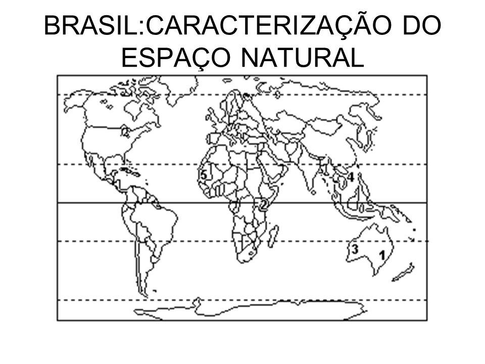 BRASIL:CARACTERIZAÇÃO DO ESPAÇO NATURAL