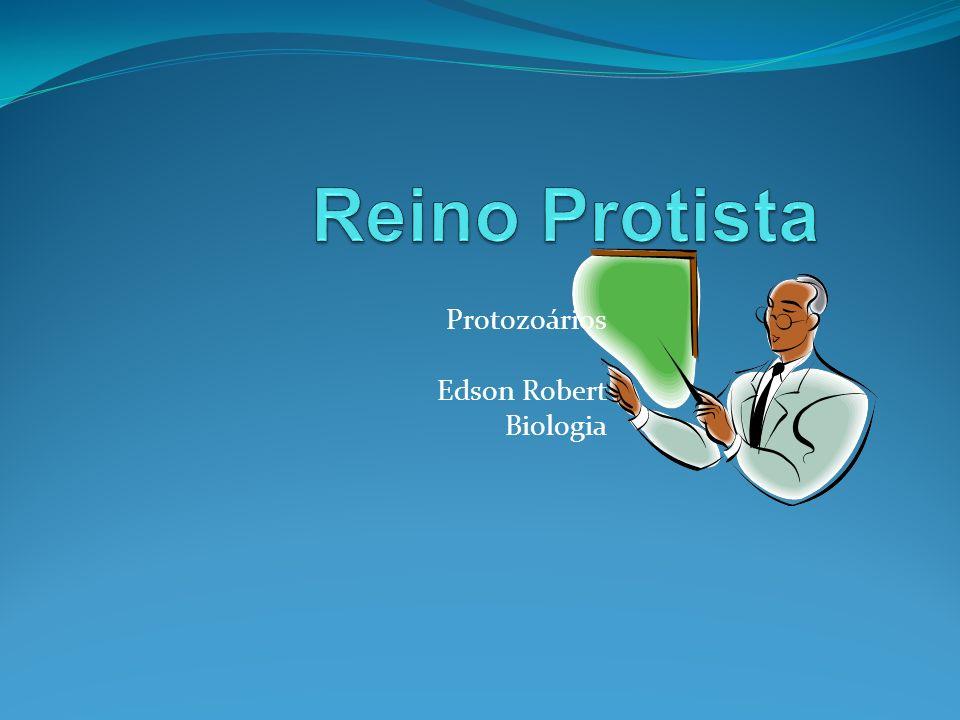 Protozoários Edson Robert Biologia