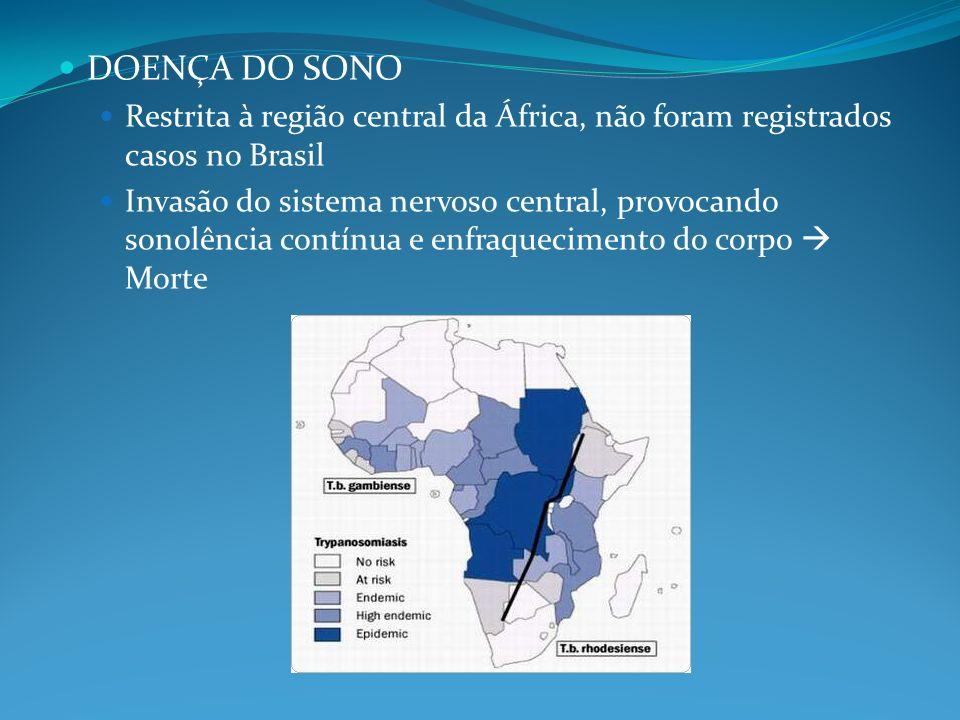 DOENÇA DO SONO Restrita à região central da África, não foram registrados casos no Brasil Invasão do sistema nervoso central, provocando sonolência co
