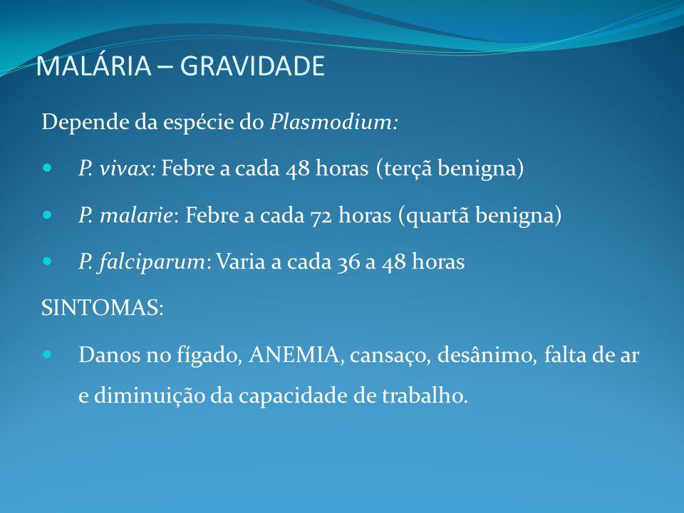 MALÁRIA – GRAVIDADE Depende da espécie do Plasmodium: P. vivax: Febre a cada 48 horas (terçã benigna) P. malarie: Febre a cada 72 horas (quartã benign