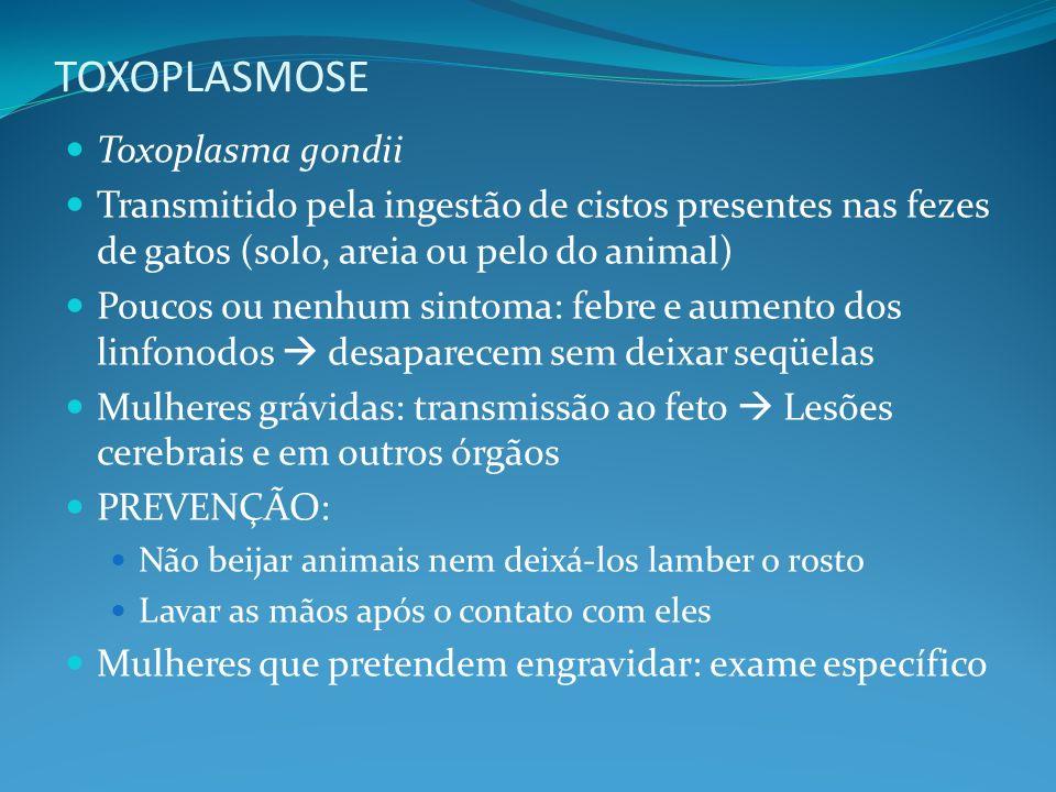 TOXOPLASMOSE Toxoplasma gondii Transmitido pela ingestão de cistos presentes nas fezes de gatos (solo, areia ou pelo do animal) Poucos ou nenhum sinto