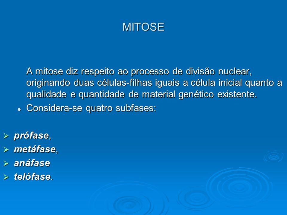 MITOSE A mitose diz respeito ao processo de divisão nuclear, originando duas células-filhas iguais a célula inicial quanto a qualidade e quantidade de