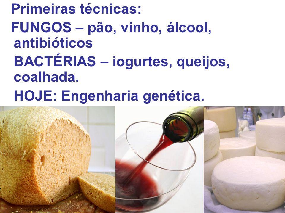 Primeiras técnicas: FUNGOS – pão, vinho, álcool, antibióticos BACTÉRIAS – iogurtes, queijos, coalhada. HOJE: Engenharia genética.