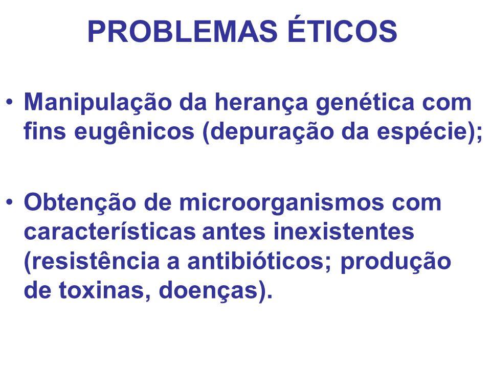PROBLEMAS ÉTICOS Manipulação da herança genética com fins eugênicos (depuração da espécie); Obtenção de microorganismos com características antes inex