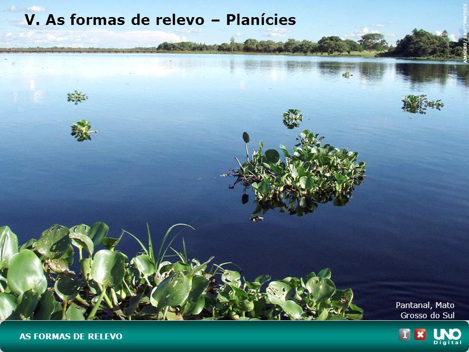 V. As formas de relevo – Planícies Pantanal, Mato Grosso do Sul AS FORMAS DE RELEVO AJANCSO/ SHUTTERSTOCK