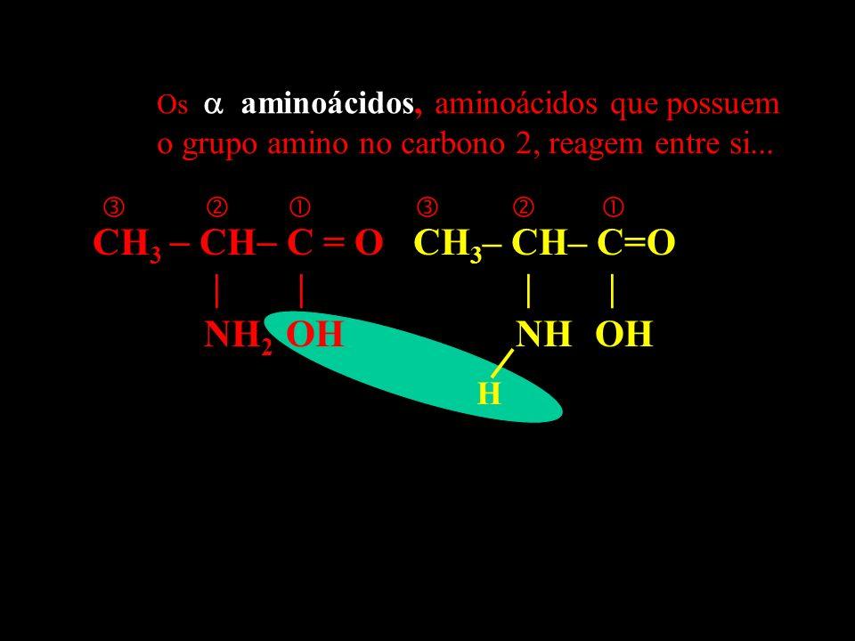 CH 3 CH C = O CH 3 – CH– C=O | | | | NH 2 OH NH OH H Os aminoácidos, aminoácidos que possuem o grupo amino no carbono 2, reagem entre si...