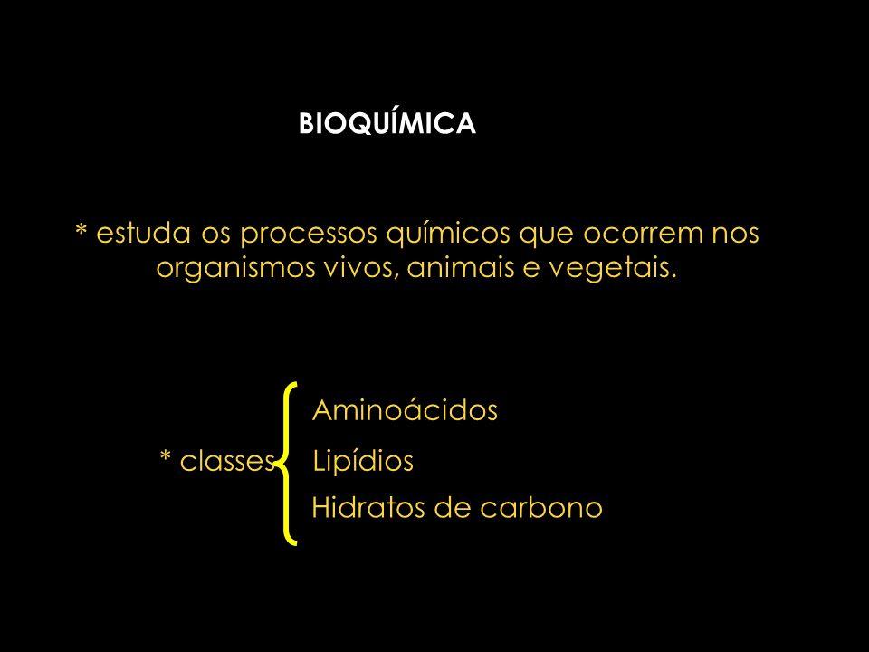 Equipe de química Docente: Rosana Maria