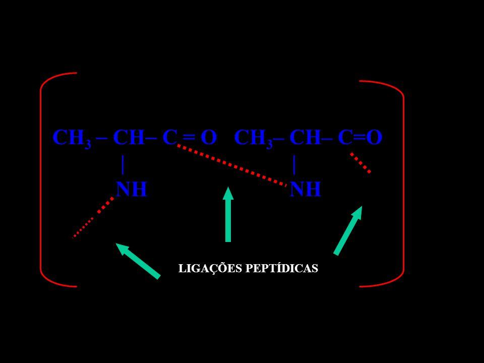 CH 3 CH C NH– CH– C=O | | NH CH 3 LIGAÇÕES PEPTÍDICAS n = O PROTEÍNA Função?? AMIDA