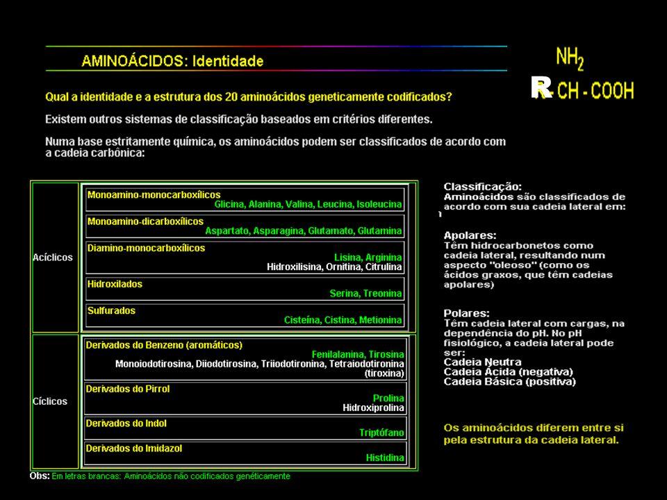 ETAPA DE AMPLIAÇÃO E APROFUNDAMENTO