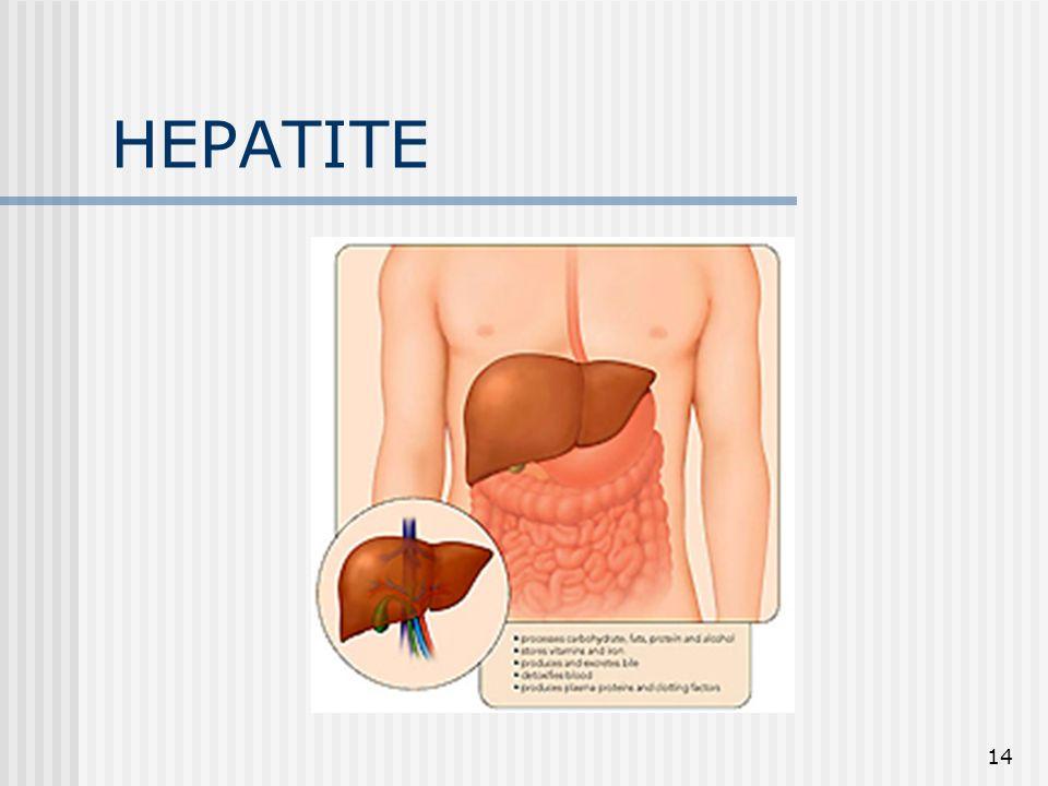 HEPATITE 14