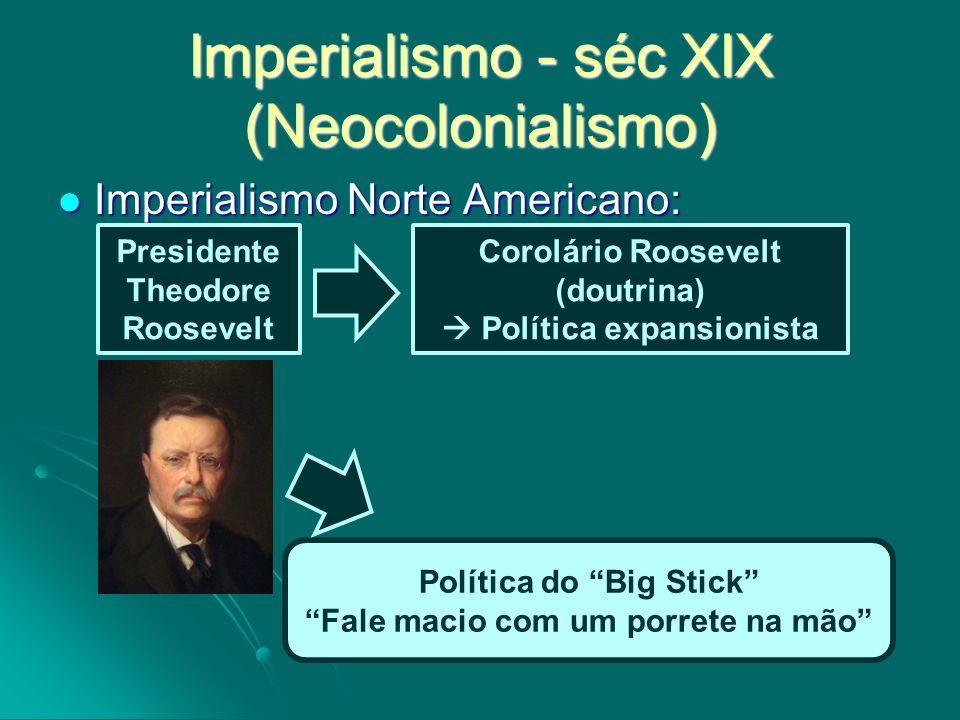 Imperialismo Norte Americano: Imperialismo Norte Americano: Imperialismo - séc XIX (Neocolonialismo) Presidente Theodore Roosevelt Corolário Roosevelt