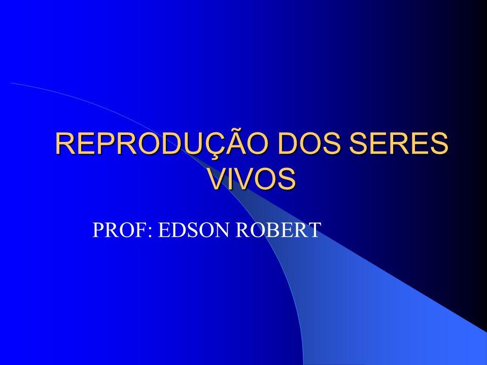 REPRODUÇÃO DOS SERES VIVOS PROF: EDSON ROBERT