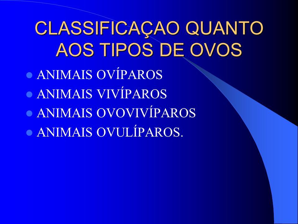 CLASSIFICAÇAO QUANTO AOS TIPOS DE OVOS ANIMAIS OVÍPAROS ANIMAIS VIVÍPAROS ANIMAIS OVOVIVÍPAROS ANIMAIS OVULÍPAROS.