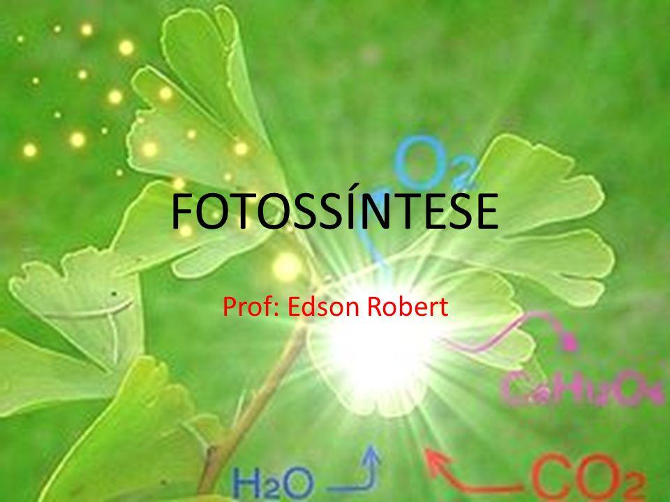 FOTOSSÍNTESE Prof: Edson Robert