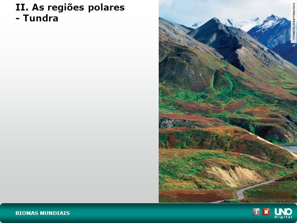 As áreas hachuradas no mapa, apesar de descontínuas, apresentam grandes semelhanças de clima e de vegetação.