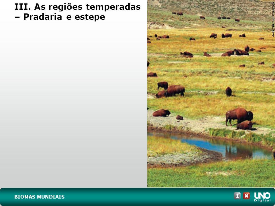 JEREMY REDDINGTON/SHUTTERSTOCK III. As regiões temperadas – Vegetação mediterrânea BIOMAS MUNDIAIS