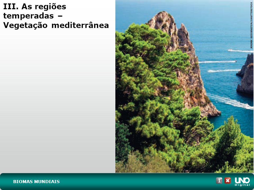 IV. As regiões intertropicais – Floresta perene JUVENAL PEREIRA/PULSAR BIOMAS MUNDIAIS