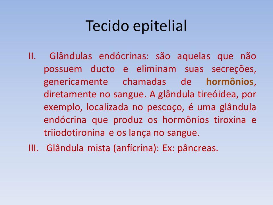 Tecido epitelial II. Glândulas endócrinas: são aquelas que não possuem ducto e eliminam suas secreções, genericamente chamadas de hormônios, diretamen
