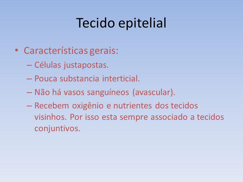 Tecido epitelial Características gerais: – Células justapostas. – Pouca substancia interticial. – Não há vasos sanguíneos (avascular). – Recebem oxigê