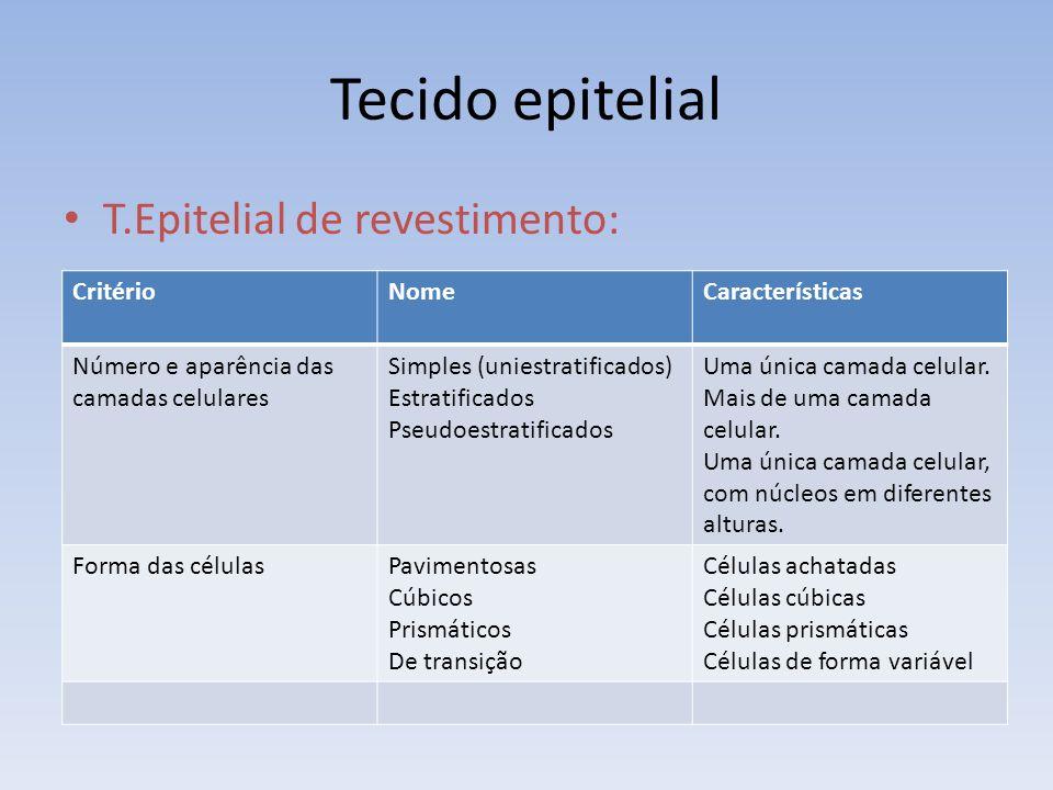 Tecido epitelial T.Epitelial de revestimento: CritérioNomeCaracterísticas Número e aparência das camadas celulares Simples (uniestratificados) Estrati