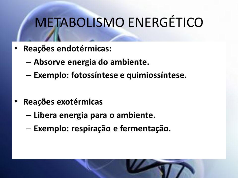 METABOLISMO ENERGÉTICO Reações endotérmicas: – Absorve energia do ambiente. – Exemplo: fotossíntese e quimiossíntese. Reações exotérmicas – Libera ene