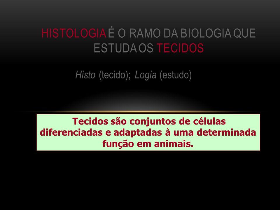 Histo (tecido); Logia (estudo) HISTOLOGIA É O RAMO DA BIOLOGIA QUE ESTUDA OS TECIDOS Tecidos são conjuntos de células diferenciadas e adaptadas à uma