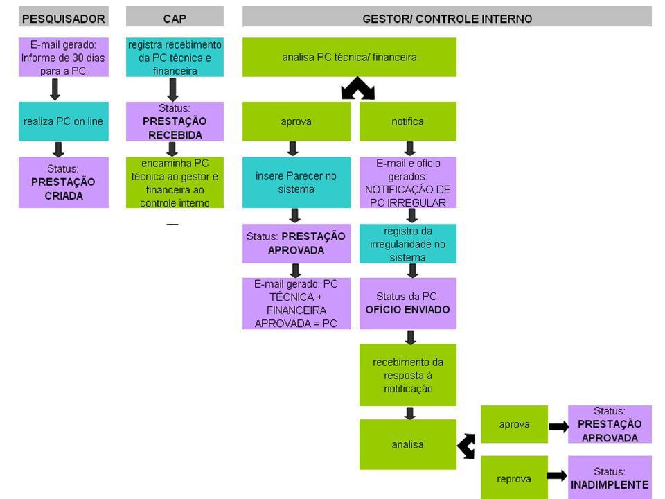 Ponto Crítico Após a publicação do instrumento, os gestores informarão ao sistema: Data de início, Data de publicação, Previsões de empenho Relatórios Técnicos de Acompanhamento