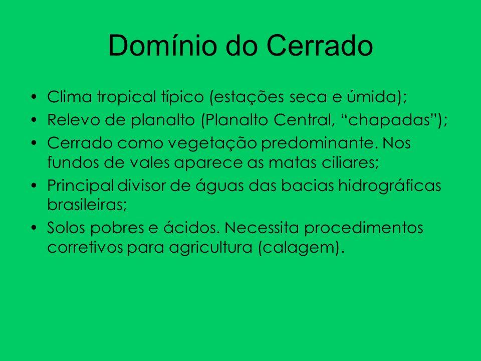 Clima tropical típico (estações seca e úmida); Relevo de planalto (Planalto Central, chapadas); Cerrado como vegetação predominante. Nos fundos de val