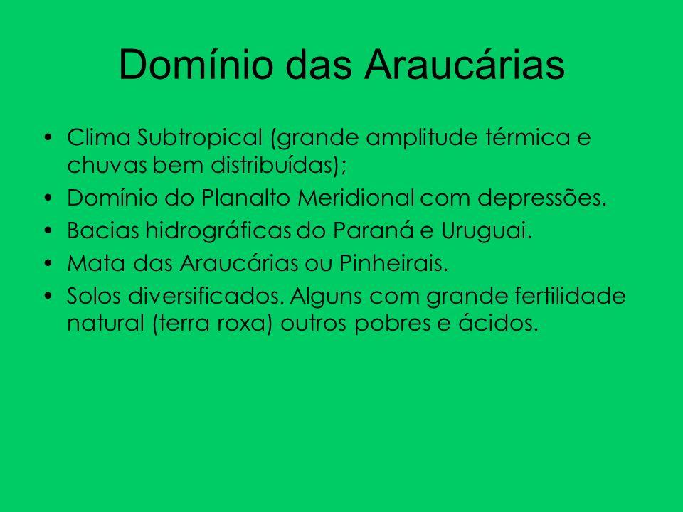 Clima Subtropical (grande amplitude térmica e chuvas bem distribuídas); Domínio do Planalto Meridional com depressões. Bacias hidrográficas do Paraná