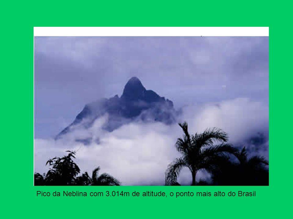 Pico da Neblina com 3.014m de altitude, o ponto mais alto do Brasil