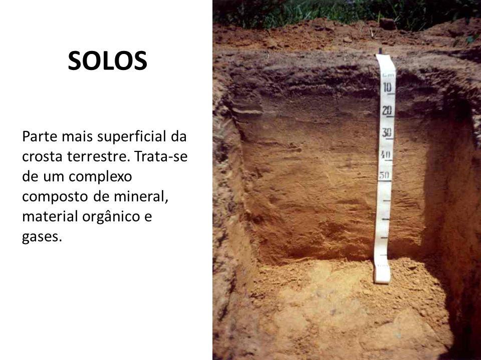 SOLOS Parte mais superficial da crosta terrestre. Trata-se de um complexo composto de mineral, material orgânico e gases.