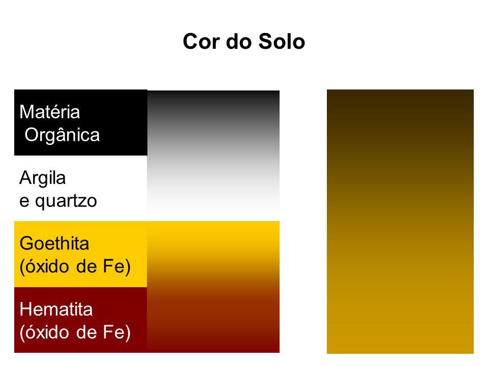 Matéria Orgânica Argila e quartzo Goethita (óxido de Fe) Hematita (óxido de Fe) Cor do Solo