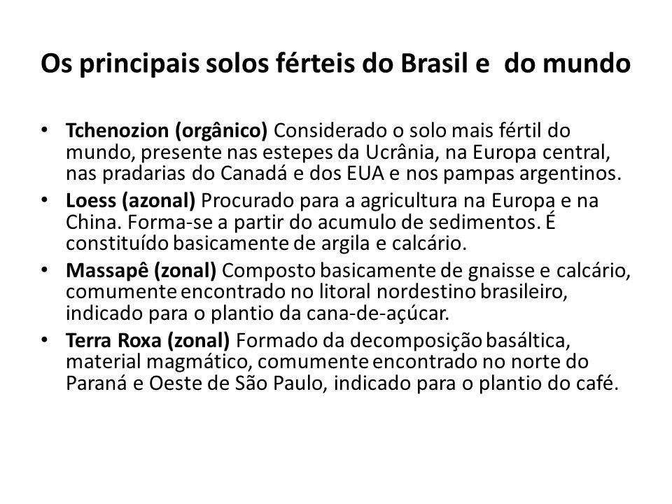 Os principais solos férteis do Brasil e do mundo Tchenozion (orgânico) Considerado o solo mais fértil do mundo, presente nas estepes da Ucrânia, na Eu