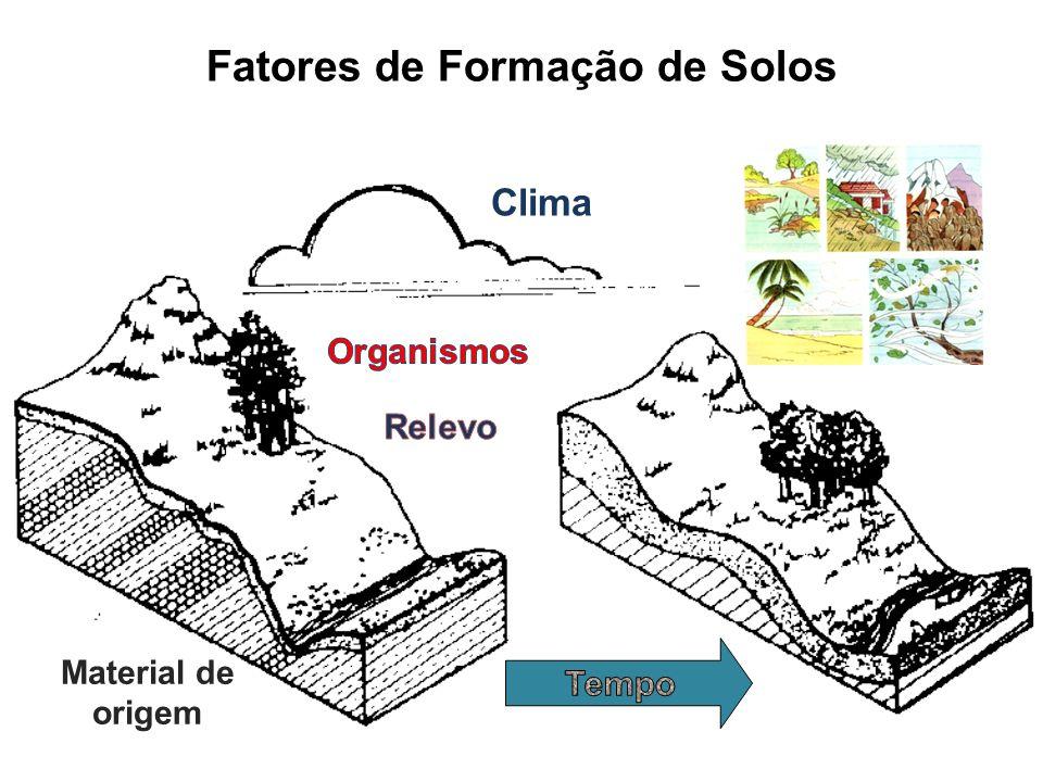 Clima Material de origem Fatores de Formação de Solos
