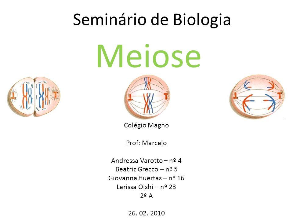 Seminário de Biologia Meiose Colégio Magno Prof: Marcelo Andressa Varotto – nº 4 Beatriz Grecco – nº 5 Giovanna Huertas – nº 16 Larissa Oishi – nº 23