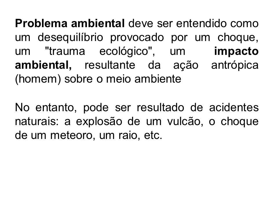 Poluição das águas Imagem: Poluição visível no Rio Tiete, município de Santana de Parnaíba.