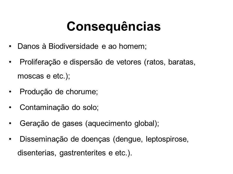 Consequências Danos à Biodiversidade e ao homem; Proliferação e dispersão de vetores (ratos, baratas, moscas e etc.); Produção de chorume; Contaminaçã