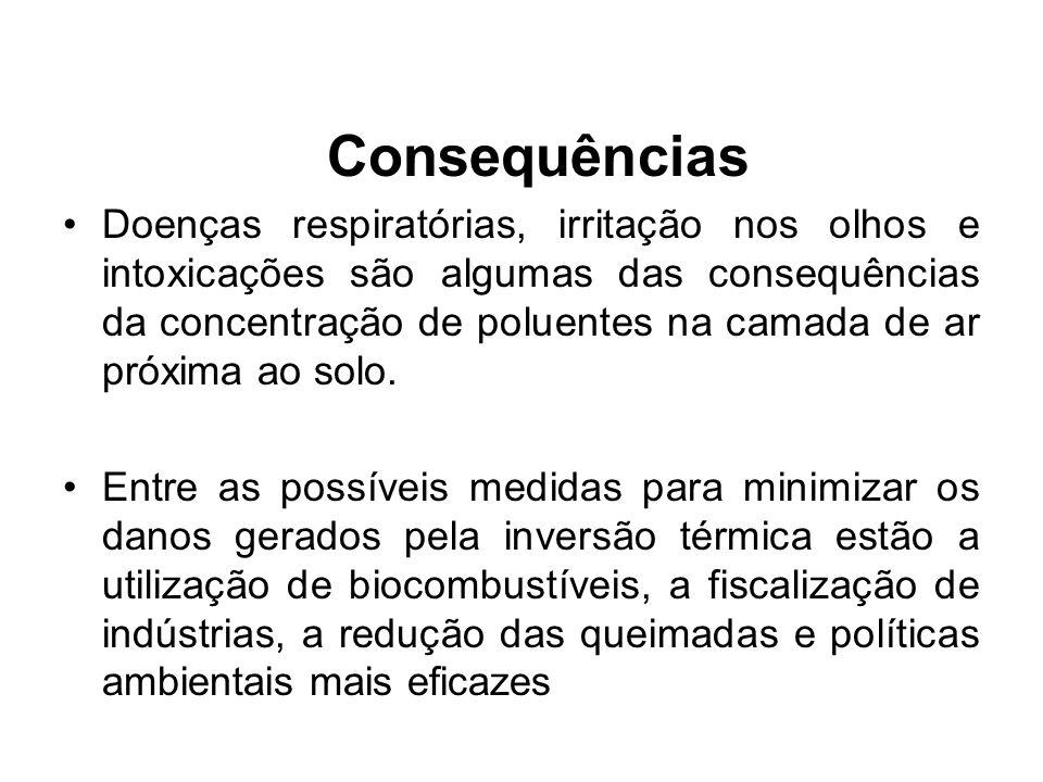 Consequências Doenças respiratórias, irritação nos olhos e intoxicações são algumas das consequências da concentração de poluentes na camada de ar pró