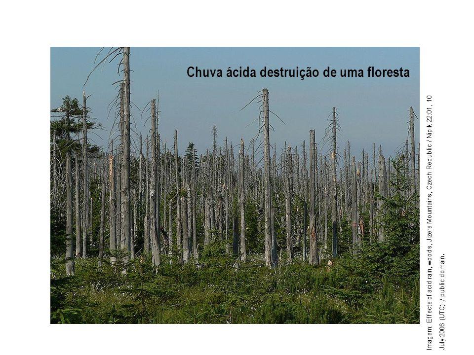 Geografia, 1º ano Problemas ambientais urbanos Chuva ácida destruição de uma floresta Imagem: Effects of acid rain, woods, Jizera Mountains, Czech Rep