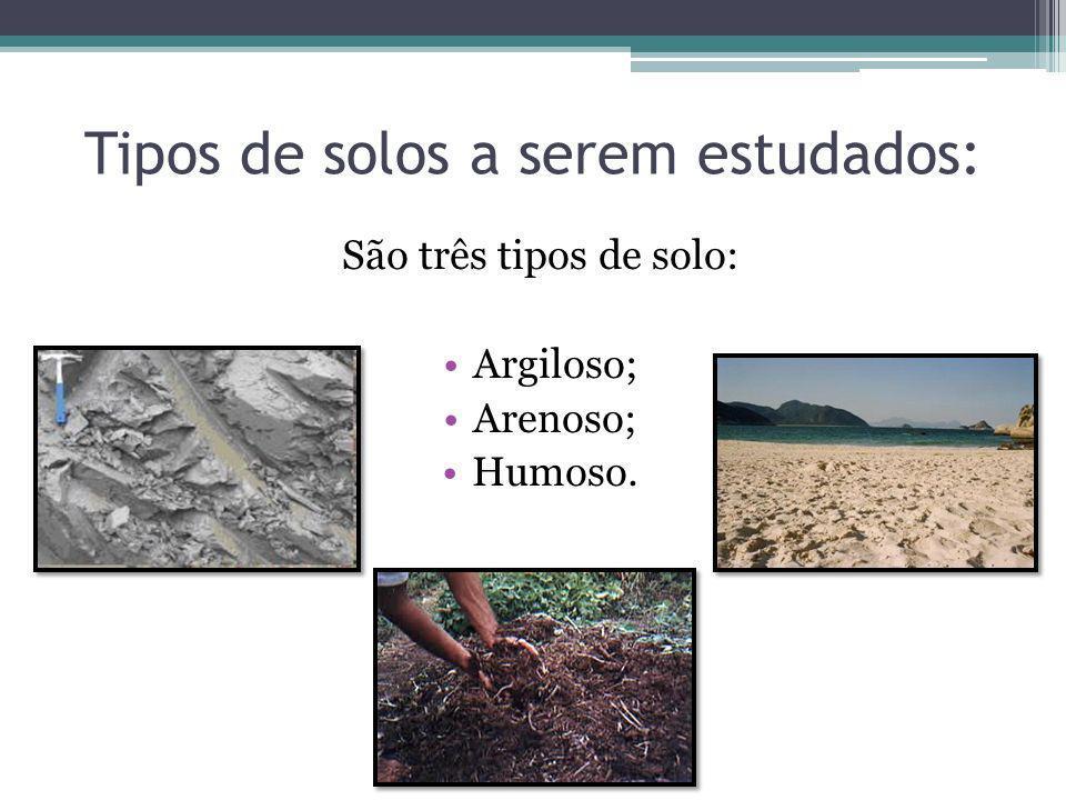 São três tipos de solo: Argiloso; Arenoso; Humoso. Tipos de solos a serem estudados:
