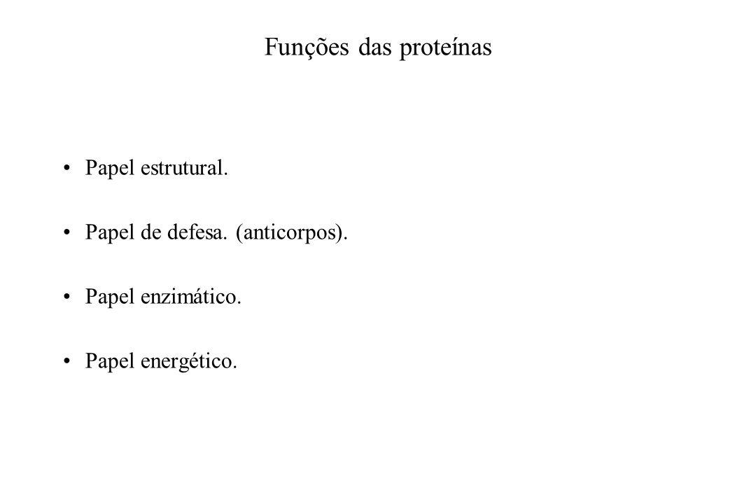 Funções das proteínas Papel estrutural. Papel de defesa. (anticorpos). Papel enzimático. Papel energético.