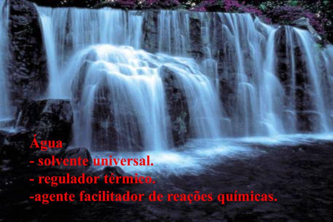 Água - solvente universal. - regulador térmico. -agente facilitador de reações químicas.