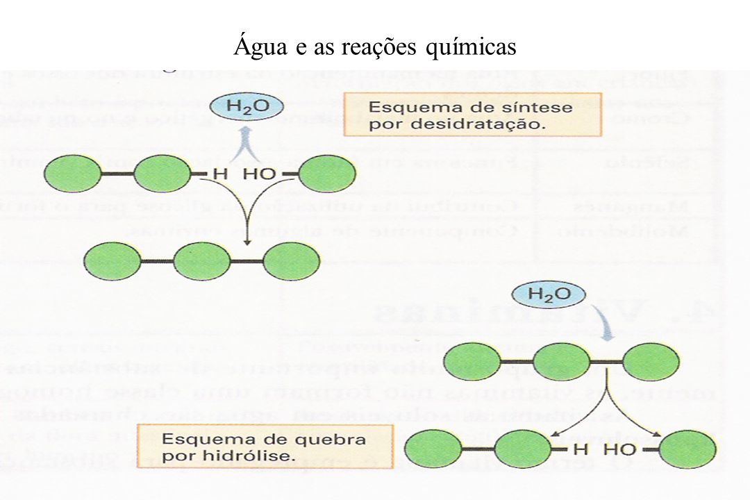Água e as reações químicas