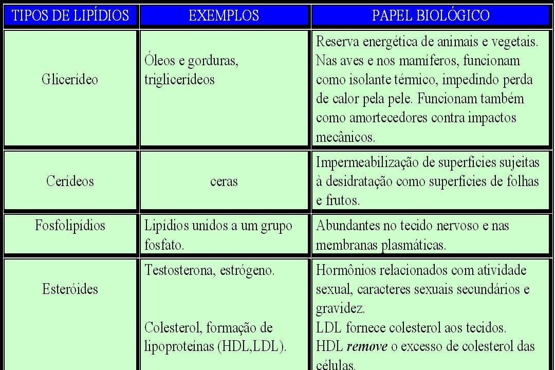 Proteínas : conjunto de aminoácidos unidos por ligações peptídicas