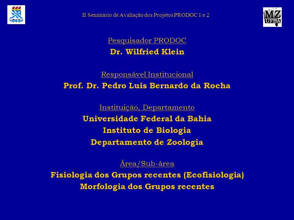 II Seminário de Avaliação dos Projetos PRODOC 1 e 2 Pesquisador PRODOC Dr. Wilfried Klein Responsável Institucional Prof. Dr. Pedro Luis Bernardo da R