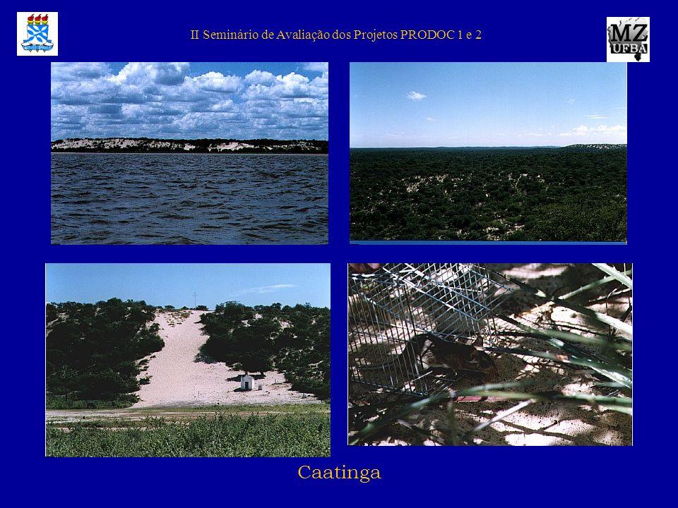 II Seminário de Avaliação dos Projetos PRODOC 1 e 2 Mata Atlântica