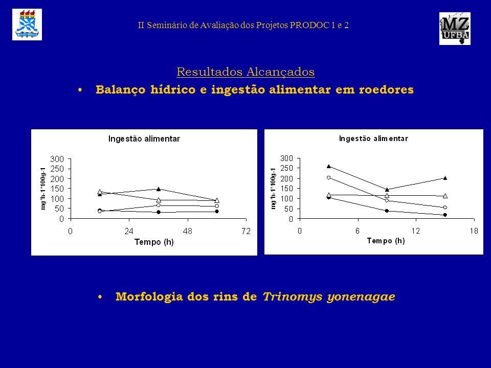 II Seminário de Avaliação dos Projetos PRODOC 1 e 2 Resultados Alcançados Balanço hídrico e ingestão alimentar em roedores Morfologia dos rins de Trin
